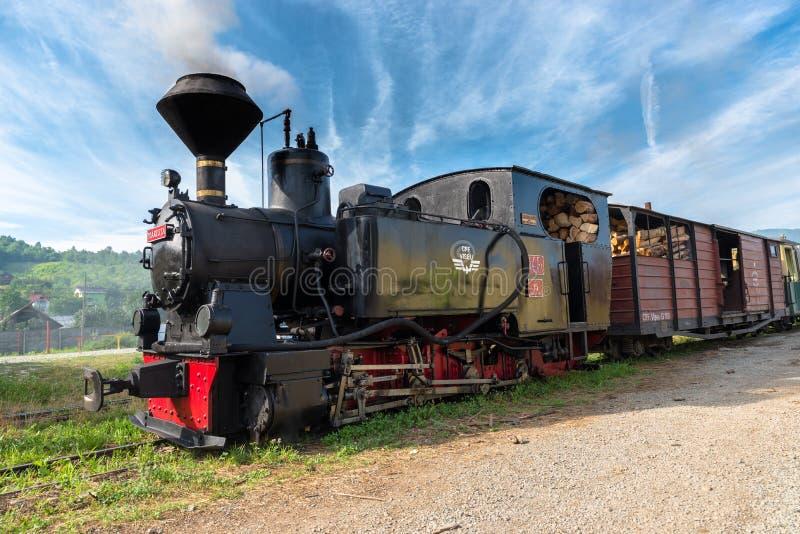 Διαρκέστε των Καρπάθιων σιδηροδρόμων δασονομίας στοκ φωτογραφία με δικαίωμα ελεύθερης χρήσης