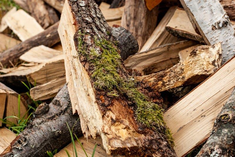 Διασπασμένο ξηρό καυσόξυλο έτοιμο για το χειμώνα Υπόβαθρο των κούτσουρων, της σημύδας, του πεύκου και της βαλανιδιάς στοκ φωτογραφίες