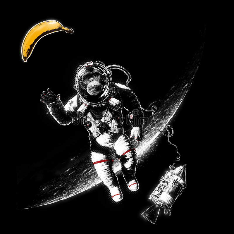 Διαστημικός πίθηκος διανυσματική απεικόνιση