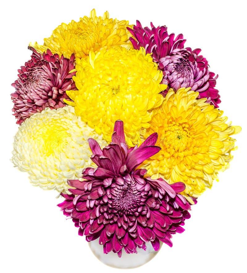 Διαφανές βάζο με τα πορφυρά και κίτρινα λουλούδια χρυσάνθεμων και dhalia, απομονωμένο, άσπρο υπόβαθρο διανυσματική απεικόνιση