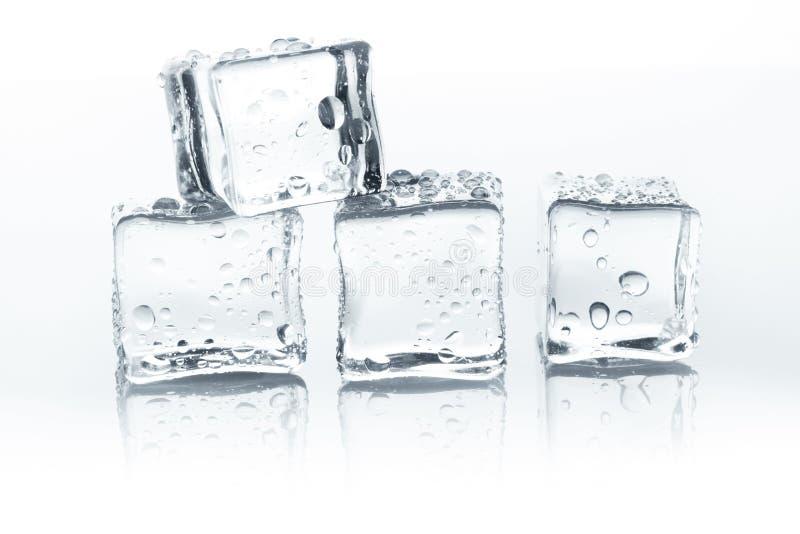 Διαφανείς κύβοι πάγου με τις πτώσεις νερού που απομονώνονται στο άσπρο υπόβαθρο στοκ φωτογραφίες