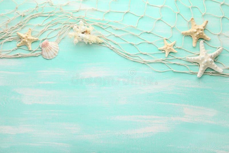 Διαφορετικά θαλασσινά κοχύλια στοκ φωτογραφία με δικαίωμα ελεύθερης χρήσης