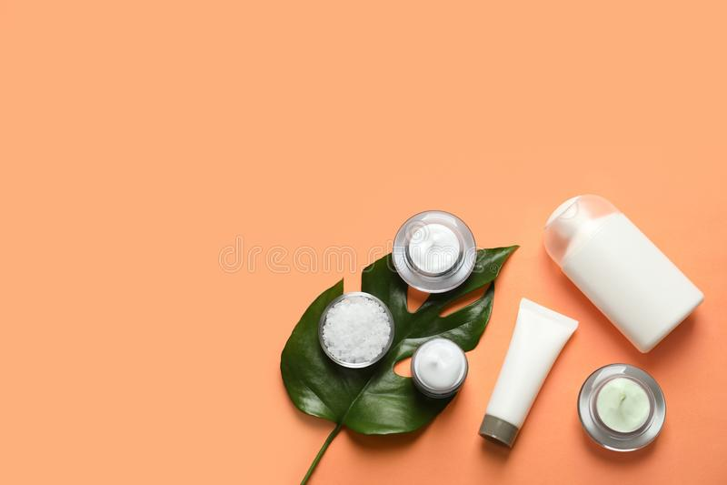 Διαφορετικά καλλυντικά προϊόντα φροντίδας δέρματος με το πράσινο φύλλο στοκ φωτογραφία