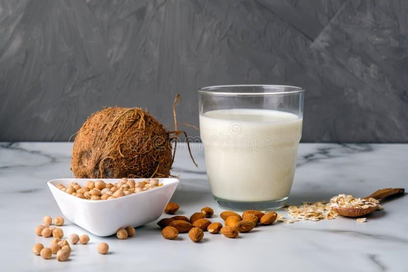 Διαφορετικά συστατικά τύπων του μη γαλακτοκομικού γάλακτος και ποτήρι του γάλακτος Οργανικό υποκατάστατο, εναλλακτικός τύπος γάλα στοκ εικόνες