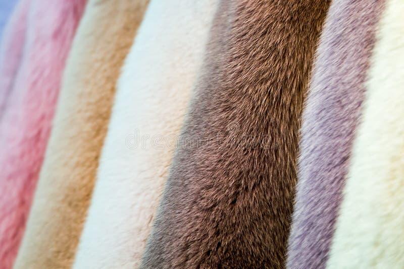 Διαφορετική γούνα χρώματος στην επίδειξη στο κατάστημα, ατελιέ στοκ εικόνες