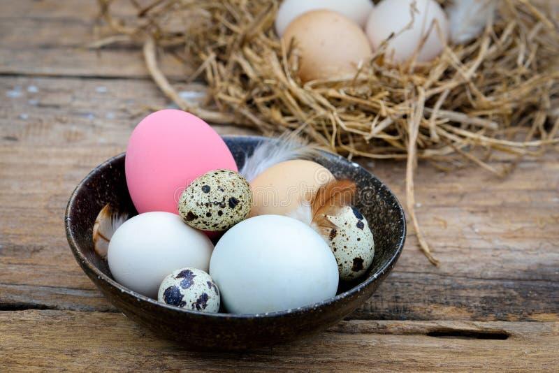 Διαφορετικοί τύποι αυγών στο κύπελλο στον ξύλινο πίνακα στοκ φωτογραφία