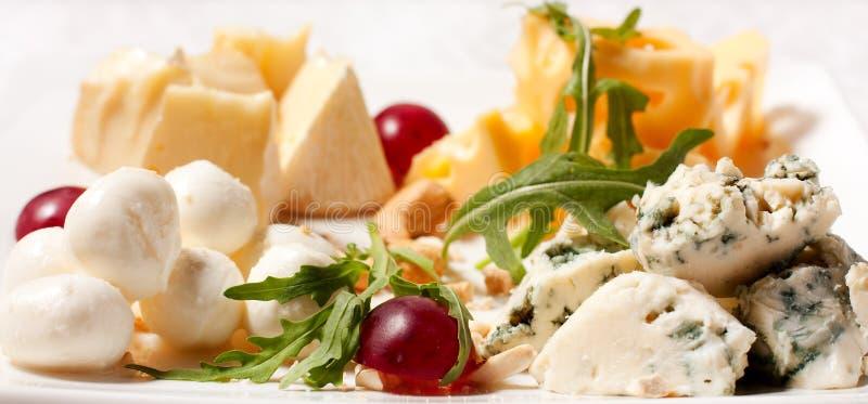 διαφορετικοί τύποι επιλογής τυριών στοκ εικόνα με δικαίωμα ελεύθερης χρήσης