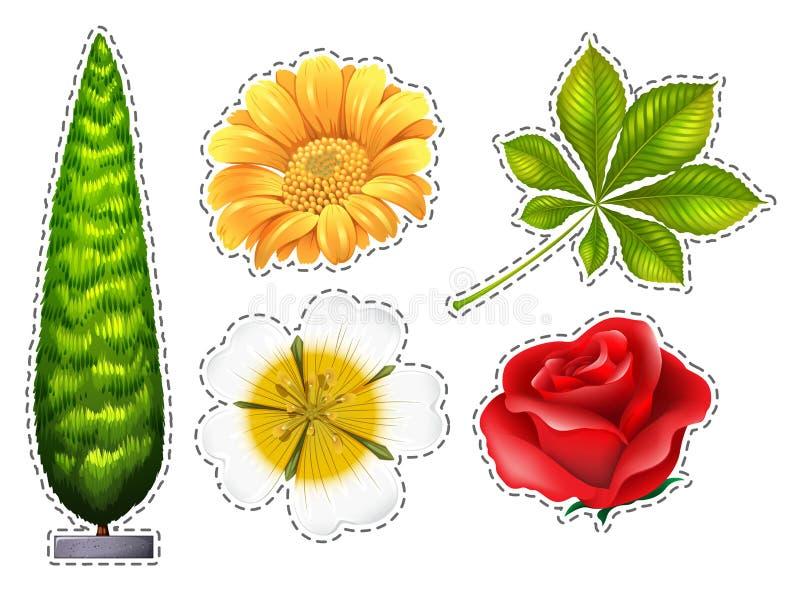 Διαφορετικοί τύποι λουλουδιών ελεύθερη απεικόνιση δικαιώματος