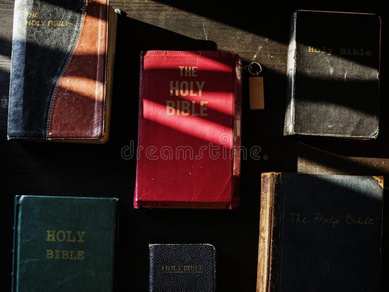 Διαφορετικός θρησκευτικός βλαστός στοκ εικόνες