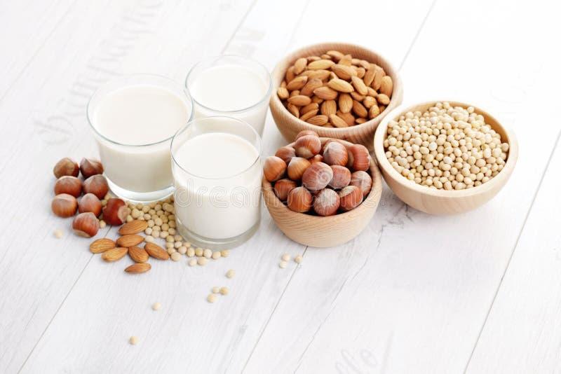 Διαφορετικό vegan γάλα στοκ εικόνες