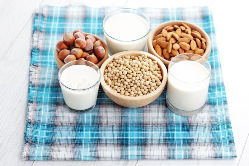 Διαφορετικό vegan γάλα στοκ εικόνα