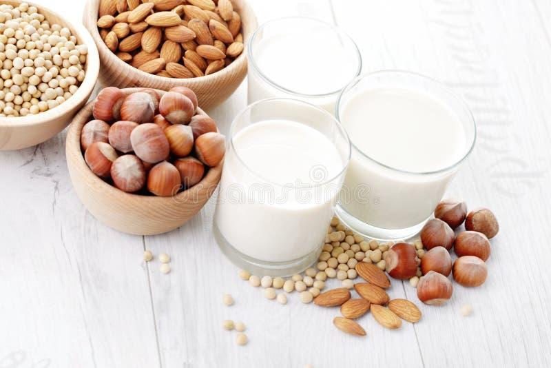 Διαφορετικό vegan γάλα στοκ φωτογραφίες με δικαίωμα ελεύθερης χρήσης