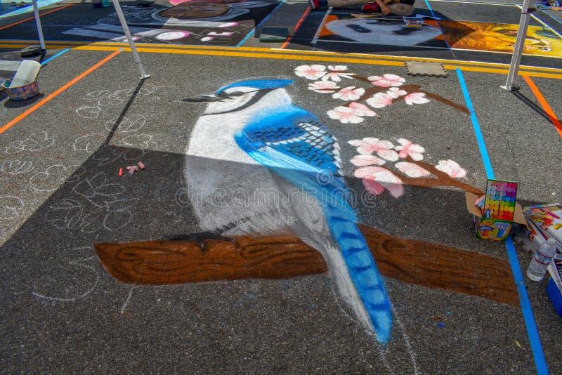 διαφράγματα 21, 2018 Newhall, ασβέστιο - Φεστιβάλ τέχνης κιμωλίας σε στο κέντρο της πόλης Newhall, ασβέστιο στοκ φωτογραφίες