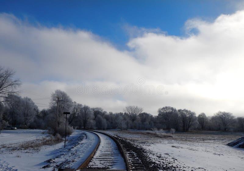 Διαδρομές τραίνων στα χιονώδη ξύλα στοκ εικόνα με δικαίωμα ελεύθερης χρήσης