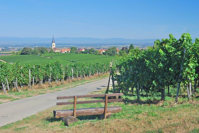 Διαδρομή κρασιού Baden, Markgraeflerland, μαύρο δάσος στοκ φωτογραφία