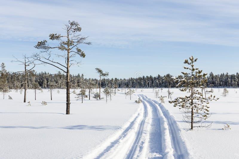 Διαδρομή οχήματος για το χιόνι στο έλος στοκ φωτογραφίες με δικαίωμα ελεύθερης χρήσης