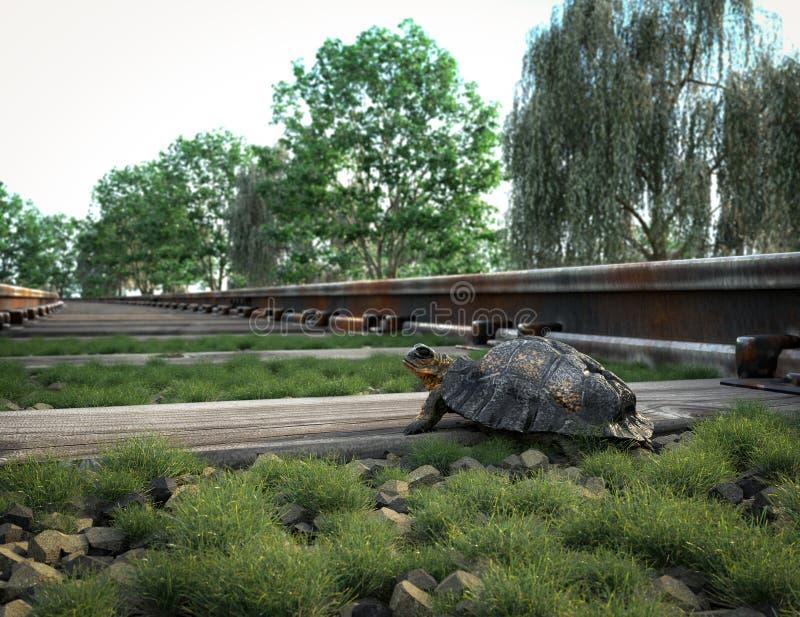 Διαδρομή σιδηροδρόμων που διασχίζει το αγροτικές τοπίο και τη χελώνα στοκ εικόνα