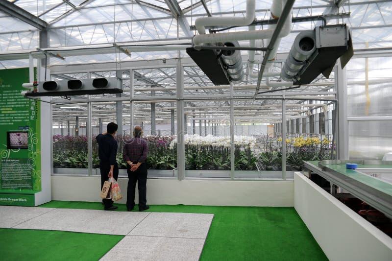 διεθνές orchid 10ου το 2011 εμφανίζ&ep στοκ εικόνες με δικαίωμα ελεύθερης χρήσης