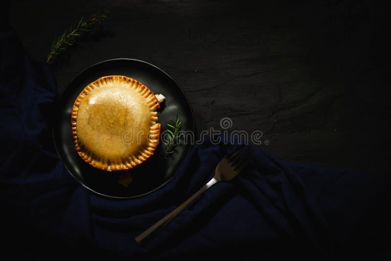 Διεθνής, στρογγυλής και χρυσής ψημένη πίτα ριπών και πιτών, πιτών κοτόπουλου στοκ εικόνα με δικαίωμα ελεύθερης χρήσης