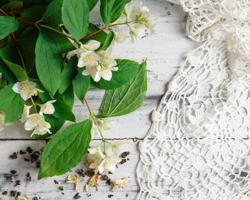 Διεσπαρμένα πράσινα φύλλα τσαγιού με jasmine τα λουλούδια στοκ εικόνες