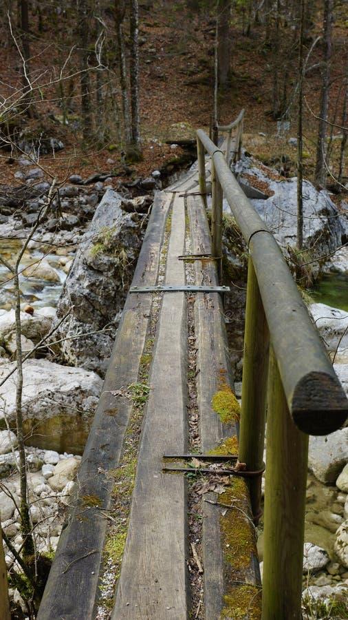 Διευκρινίστε την παλαιά ξύλινη γέφυρα για τους ταξιδιώτες στην αγριότητα στοκ φωτογραφίες