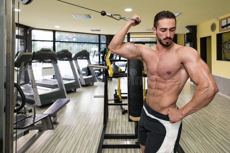 Δικέφαλοι μυ'ες Workout με τα καλώδια στοκ εικόνα
