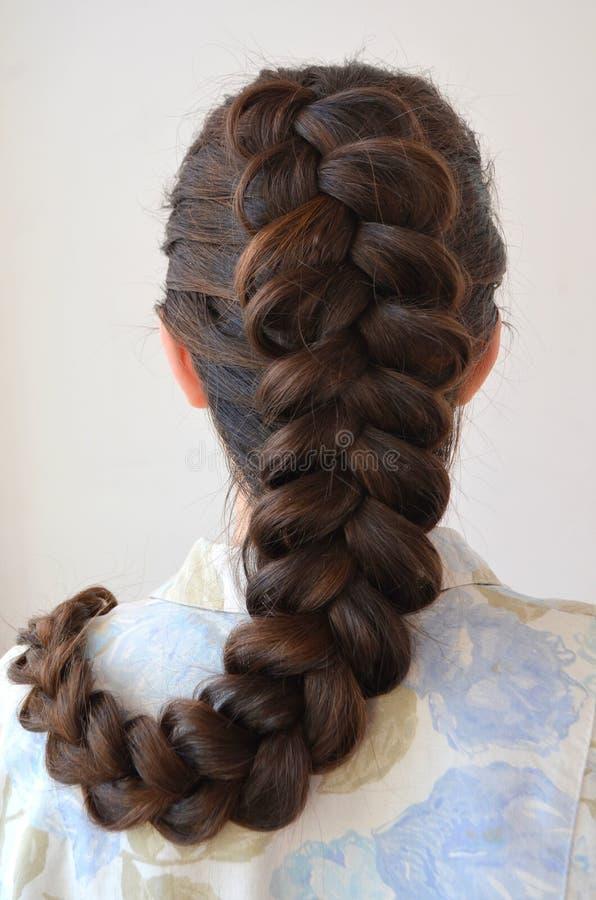 Δικτυωτή γαλλική πλεξούδα, hairstyle με το μακροχρόνιο μήκος της τρίχας στοκ φωτογραφία