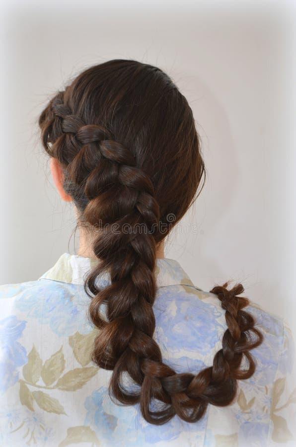 Δικτυωτή γαλλική πλεξούδα, hairstyle με το μακροχρόνιο μήκος της τρίχας στοκ εικόνα με δικαίωμα ελεύθερης χρήσης