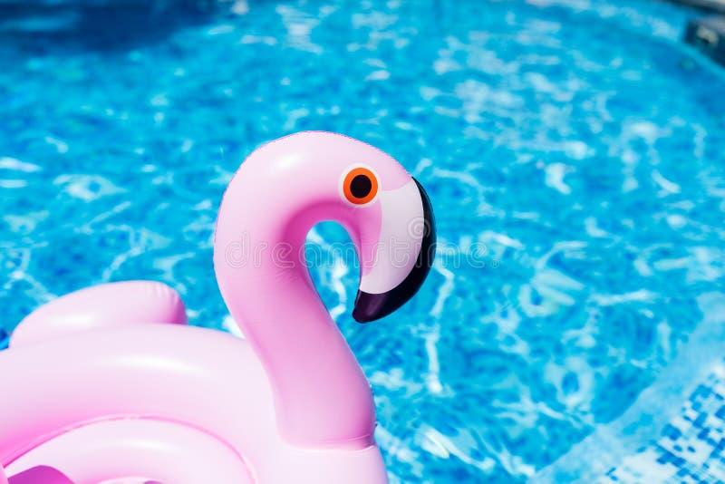 Διογκώσιμο ρόδινο φλαμίγκο στην πισίνα Θερινός χρόνος στην πισίνα με τα πλαστικά παιχνίδια Χαλάρωση, διακοπές, διακοπές στοκ φωτογραφίες
