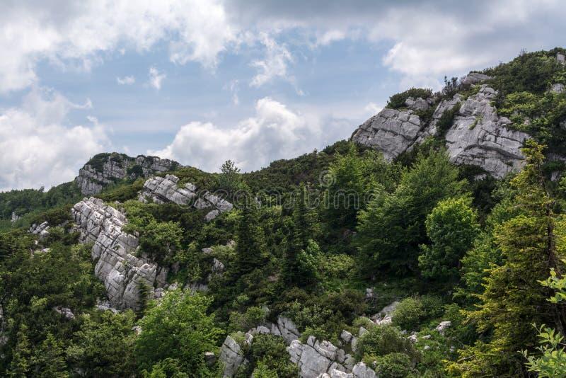 Διπλωμένοι σχηματισμοί βράχου στρωμάτων σε Risnjak, κροατικό εθνικό πάρκο στοκ φωτογραφία