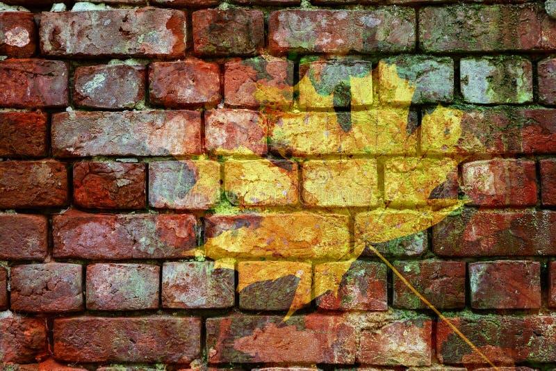 Διπλός τραχύς παλαιός τουβλότοιχος έκθεσης και κίτρινο φύλλο σφενδάμου στοκ φωτογραφίες