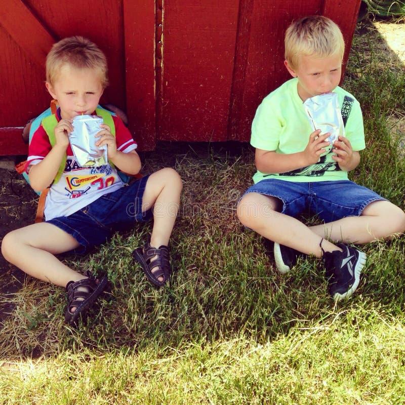 Διψασμένοι αδελφοί που παίρνουν ένα σπάσιμο στη σκιά στοκ εικόνες