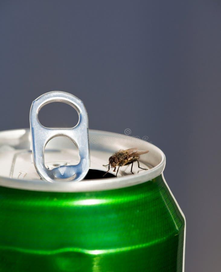 διψασμένος στοκ φωτογραφία