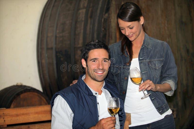 Δοκιμάζοντας κρασί ζεύγους στοκ εικόνες