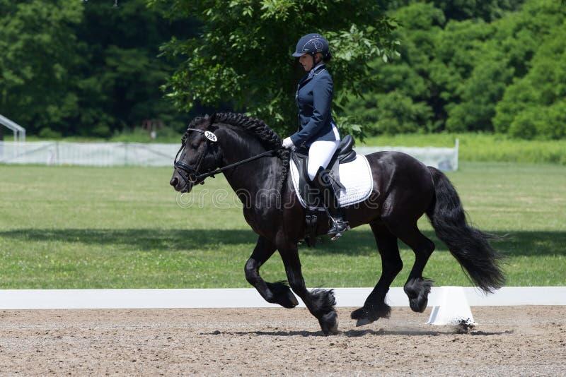 Δοκιμή 2 επιπέδων κατάρτισης εκπαίδευσης αλόγου σε περιστροφές USEF στοκ φωτογραφία