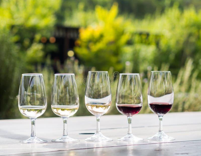 Δοκιμή κρασιού στη Νότια Αφρική στοκ εικόνα με δικαίωμα ελεύθερης χρήσης