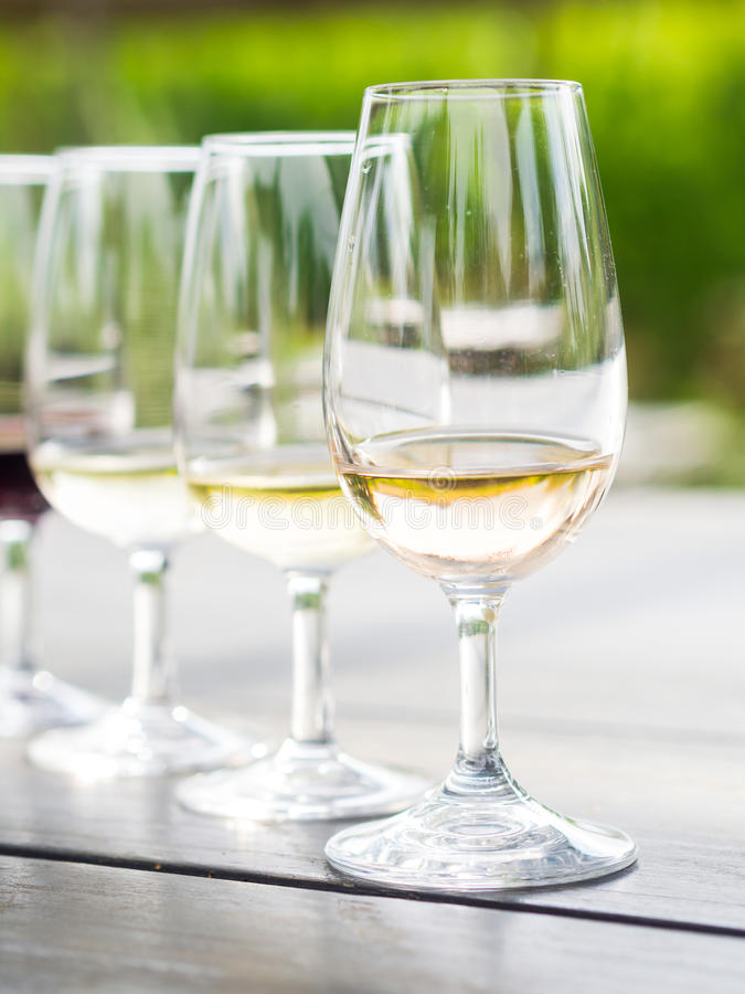 Δοκιμή κρασιού στη Νότια Αφρική στοκ φωτογραφίες με δικαίωμα ελεύθερης χρήσης