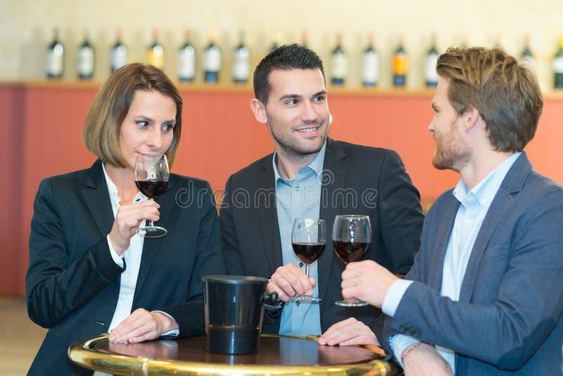Δοκιμή κρασιού στο φραγμό στοκ φωτογραφία