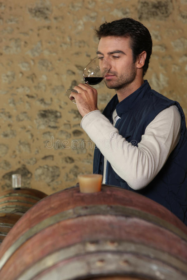 Δοκιμή κρασιού στοκ φωτογραφία με δικαίωμα ελεύθερης χρήσης