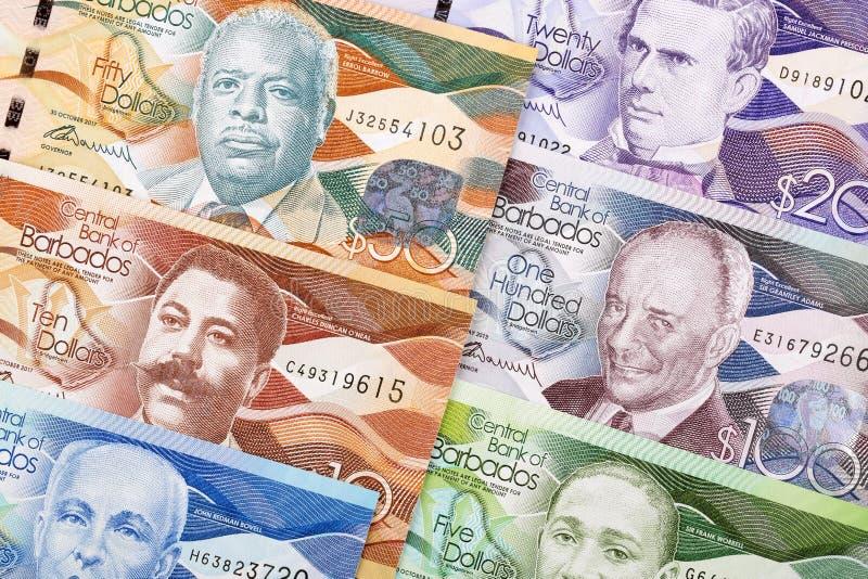 Δολάρια από τα Μπαρμπάντος ένα υπόβαθρο στοκ εικόνα
