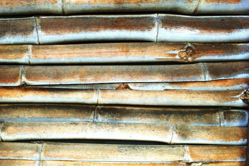 Δομές ενός ζωηρόχρωμου τοίχου μπαμπού στοκ εικόνες