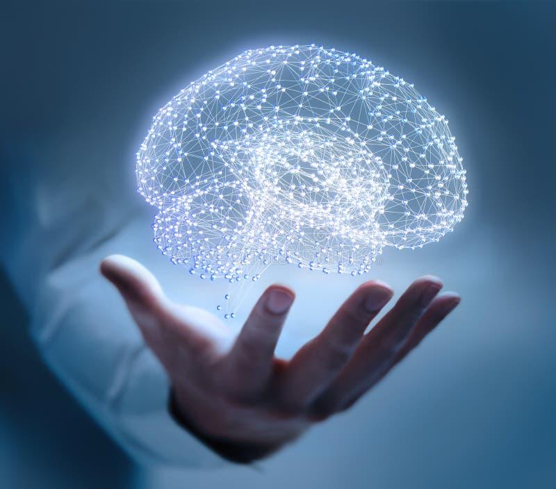 Δομή πλεγμάτων που διαμορφώνεται σε έναν ανθρώπινο εγκέφαλο στοκ εικόνα