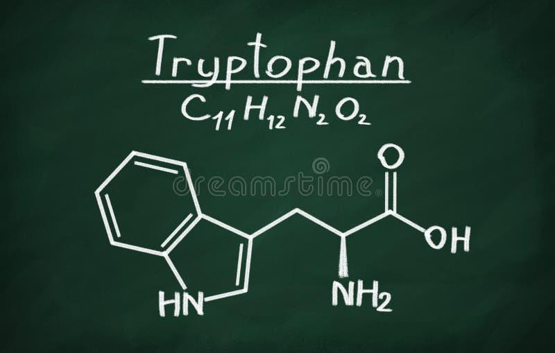 Δομικό πρότυπο Tryptophan ελεύθερη απεικόνιση δικαιώματος