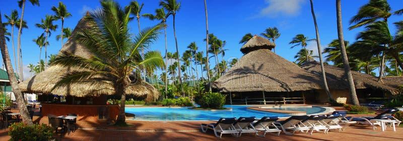 δομινικανή εξωτική κολύμ&beta στοκ φωτογραφία με δικαίωμα ελεύθερης χρήσης
