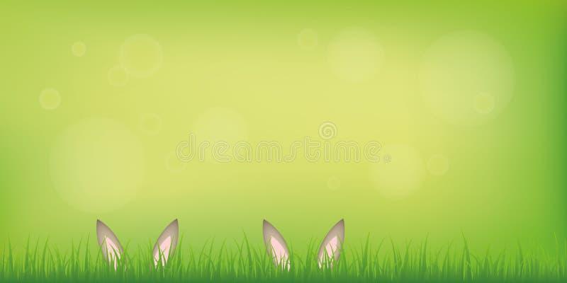 Δορά αυτιών λαγουδάκι λαγών ζεύγους στο χορτοτάπητα στο πράσινο υπόβαθρο άνοιξη διανυσματική απεικόνιση