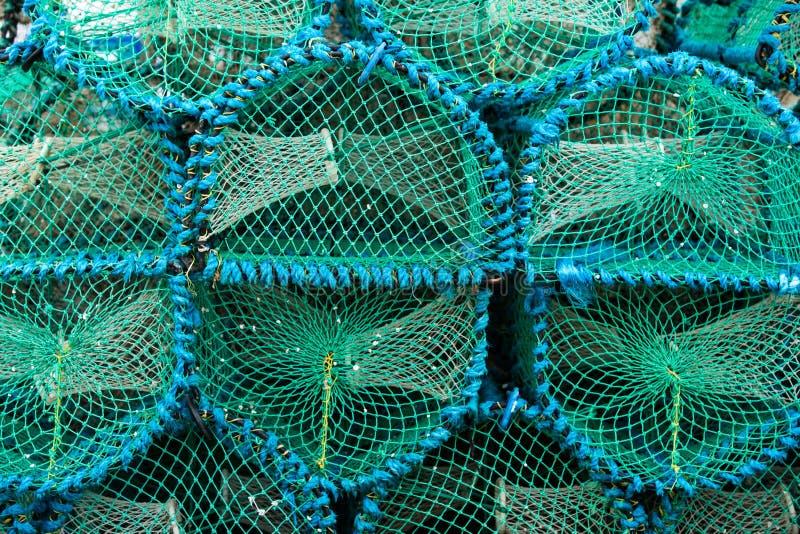 Δοχεία αστακών στοκ φωτογραφία
