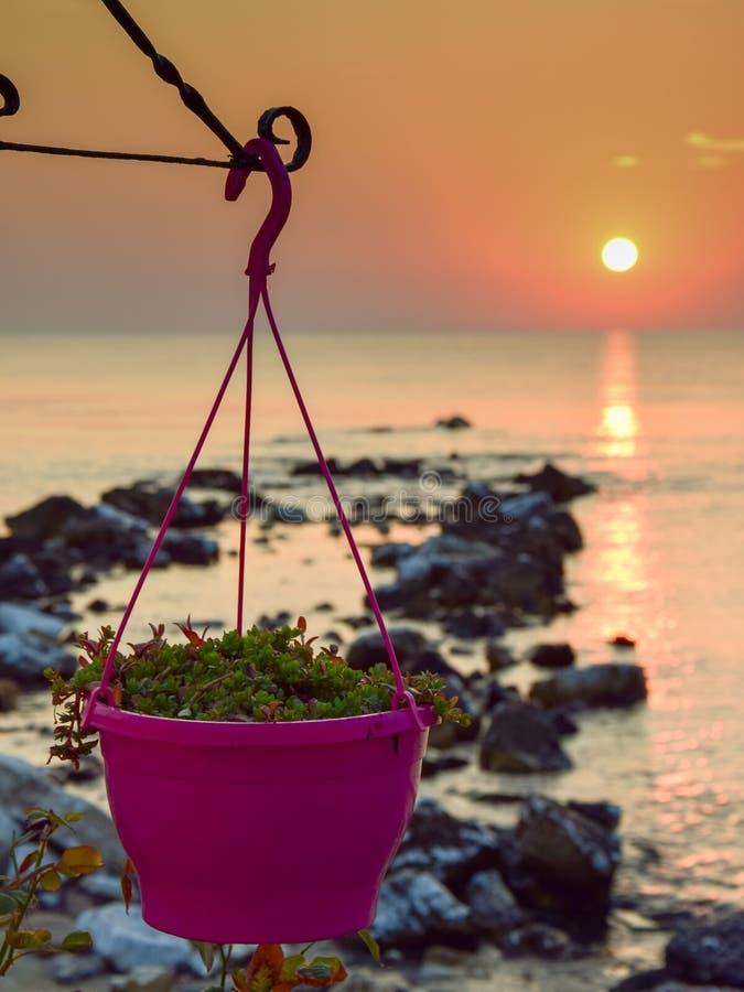 Δοχεία λουλουδιών, στην ακτή της Μεσογείου, με την ανατολή και τις πέτρες που βγαίνουν από τη θάλασσα στοκ φωτογραφία με δικαίωμα ελεύθερης χρήσης