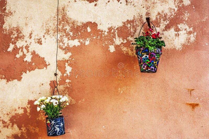 Δοχεία λουλουδιών που κρεμούν σε έναν αγροτικό τοίχο στοκ εικόνα με δικαίωμα ελεύθερης χρήσης
