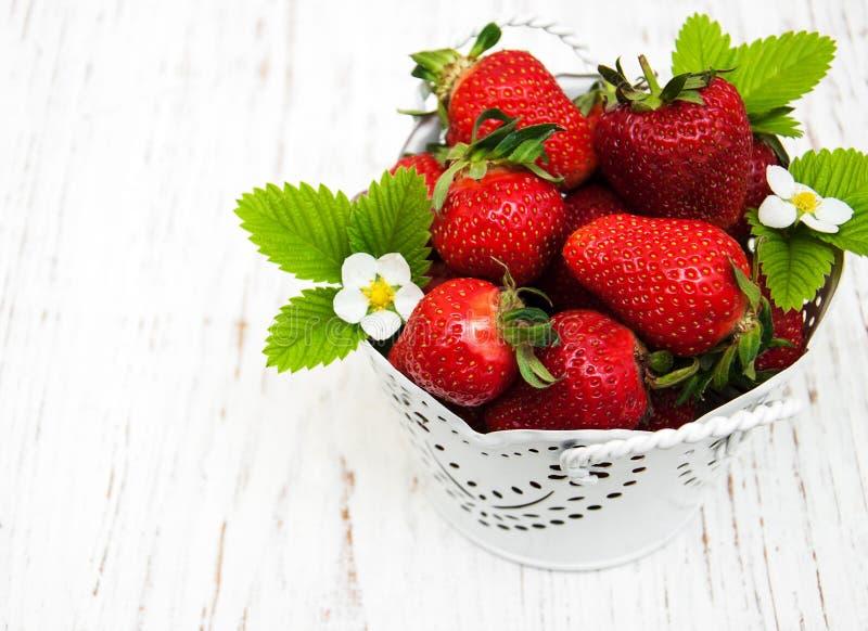 Δοχείο μετάλλων με τις φράουλες στοκ εικόνες