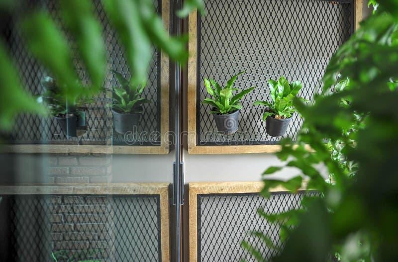 Δοχείο πράσινου στοκ εικόνες